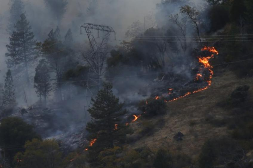 PG&E looks out on new probation terms to trim further wildfire risks