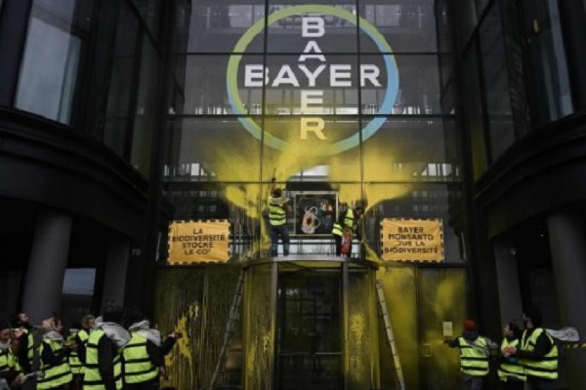 Bayer stocks seven-year-low after $2 billion penalty award in Roundup trial