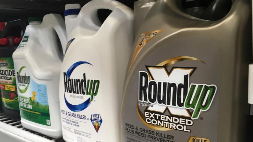 Bayer shares climb on new plans to tackle glyphosate lawsuits