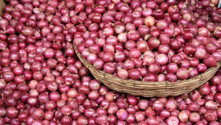 Patchy monsoon leads to supply shortage of onions in the sub-continent