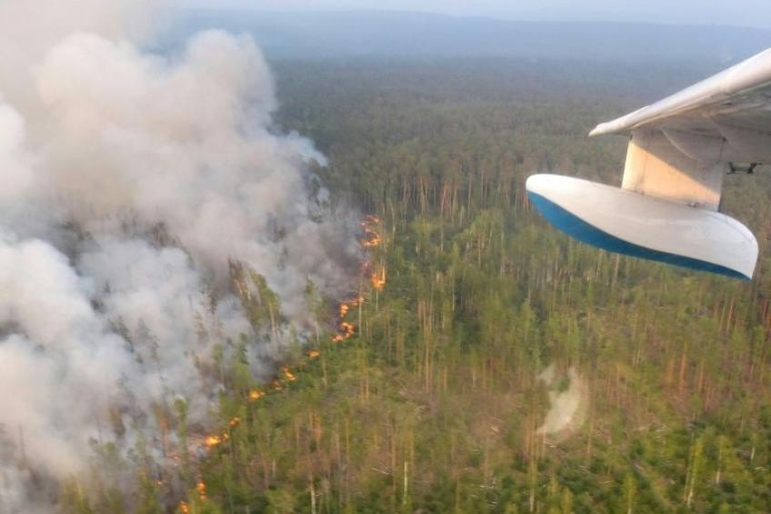 Deadly Siberian forest fire forces Russian oil companies to halt production