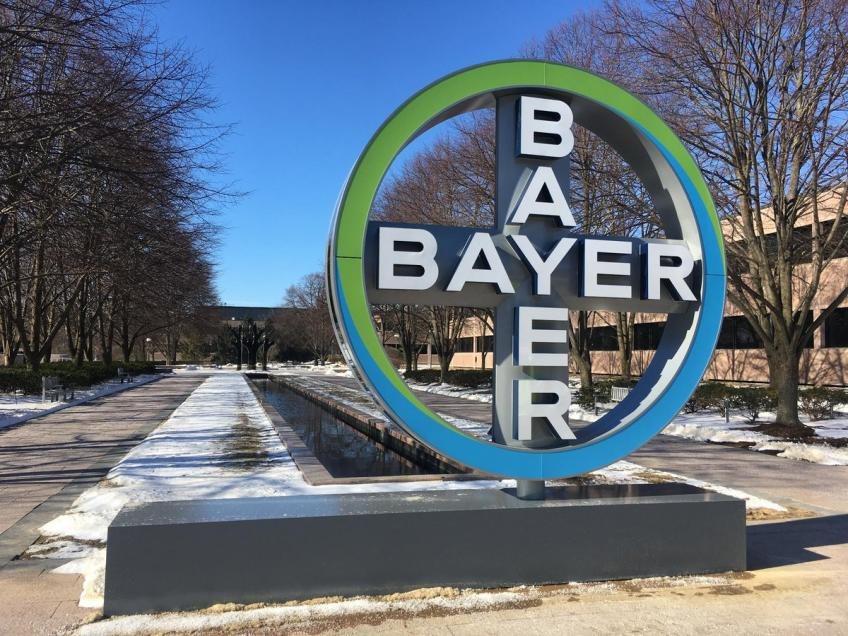 US court blocks sales of dicamba-based Bayer weed killers